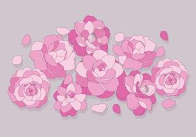 camellia-flowers-vector